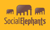 socialelephantbanner